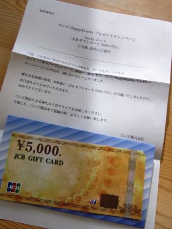 RIMG0600.JPG