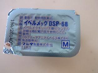RIMG7513.JPG